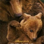 New Disneynature's BEARS Trailer #DisneynatureBears