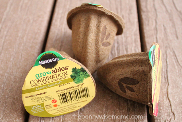 scotts gro-ables seed pods