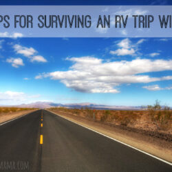 Let's Go RVing! 5 Tips for Surviving an RV Trip with Kids