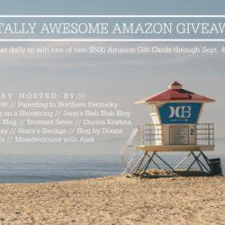 $500 Amazon Gift Card Giveaway (2 Winners!)