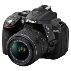 Shopping for a Digital Camera? Check Out These Top Picks at Best Buy