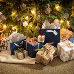 Last Minute Gift Ideas from Best Buy