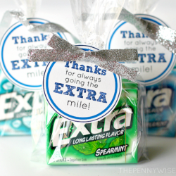 Give Extra this Holiday Season – Gift Idea + Free Printable Tag