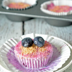 Berry Frozen Yogurt Cupcakes