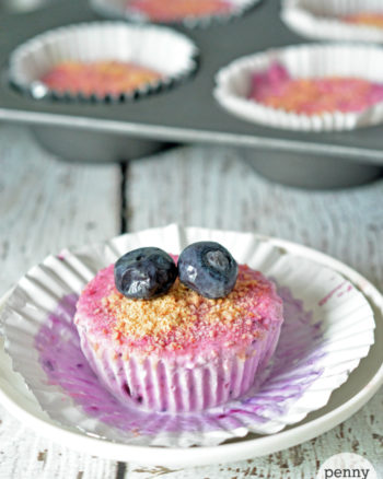 Berry Frozen Yogurt Cupcakes