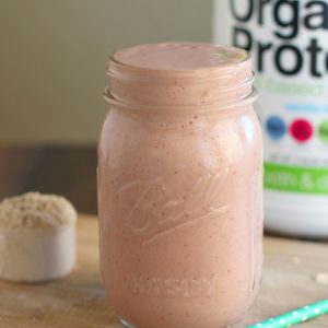 Tropical Breakfast Smoothie with Orgain Organic Protein {Giveaway}