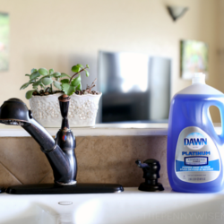 7 Awesome Ways to Use Dawn Dish Soap