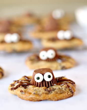 Easy Gluten-Free Spider Cookies