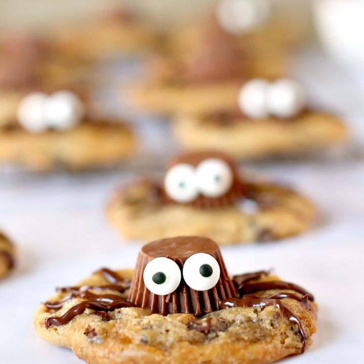 Easy Gluten-Free Spider Cookies