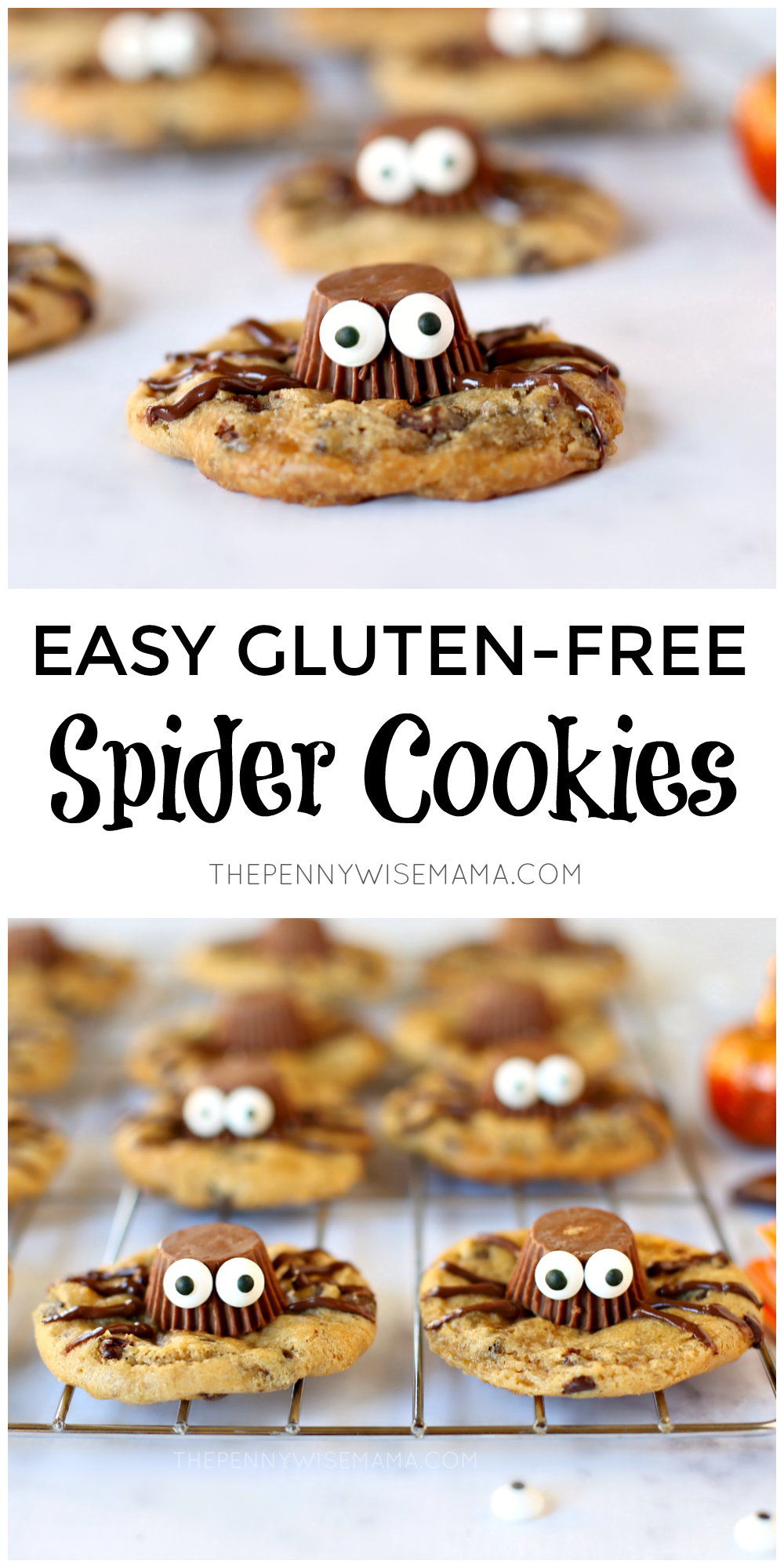 Quick & Easy Gluten-Free Spider Cookies for Halloween